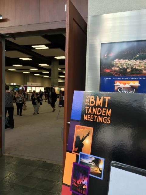 Aloha BMT Tandem Meetings 2016!