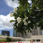 Happy New Year from the Hawaii Convention Center!